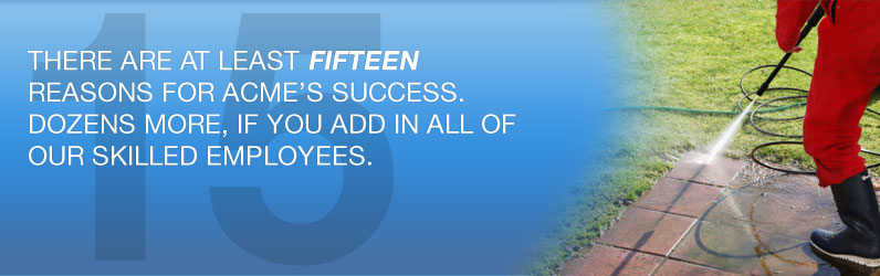 There are at least fifteen reasons for Acme's success. Dozens more, if you add in all of our skilled employees.